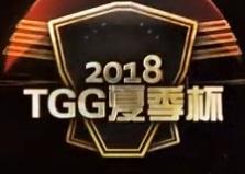 2018TGG夏季杯赛跑跑卡丁车上海总决赛组队决赛-RS vs 黄白